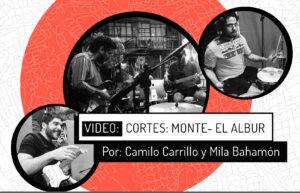 Cortes: Monte – El Albur
